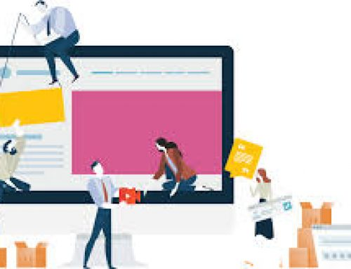 نقش های آموزش پشتیبانی سایت