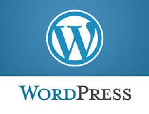 طراحی سایت وردپرسی در کهگیلویه و بویراحمد